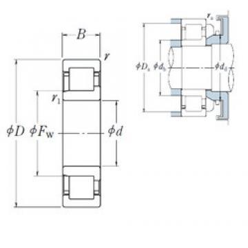 300 mm x 540 mm x 85 mm  NSK NJ 260 cylindrical roller bearings