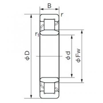 220 mm x 400 mm x 65 mm  NACHI NU 244 cylindrical roller bearings