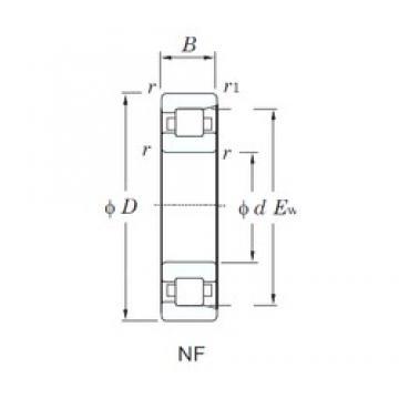 300 mm x 540 mm x 85 mm  KOYO NF260 cylindrical roller bearings